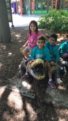 Brookfield Zoo trip